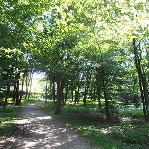 Eli Lucht Park Niederrad